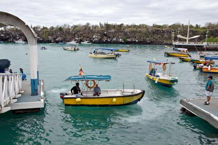 santa cruz galapagos islands